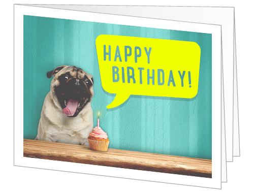 Amazon - Gift Card