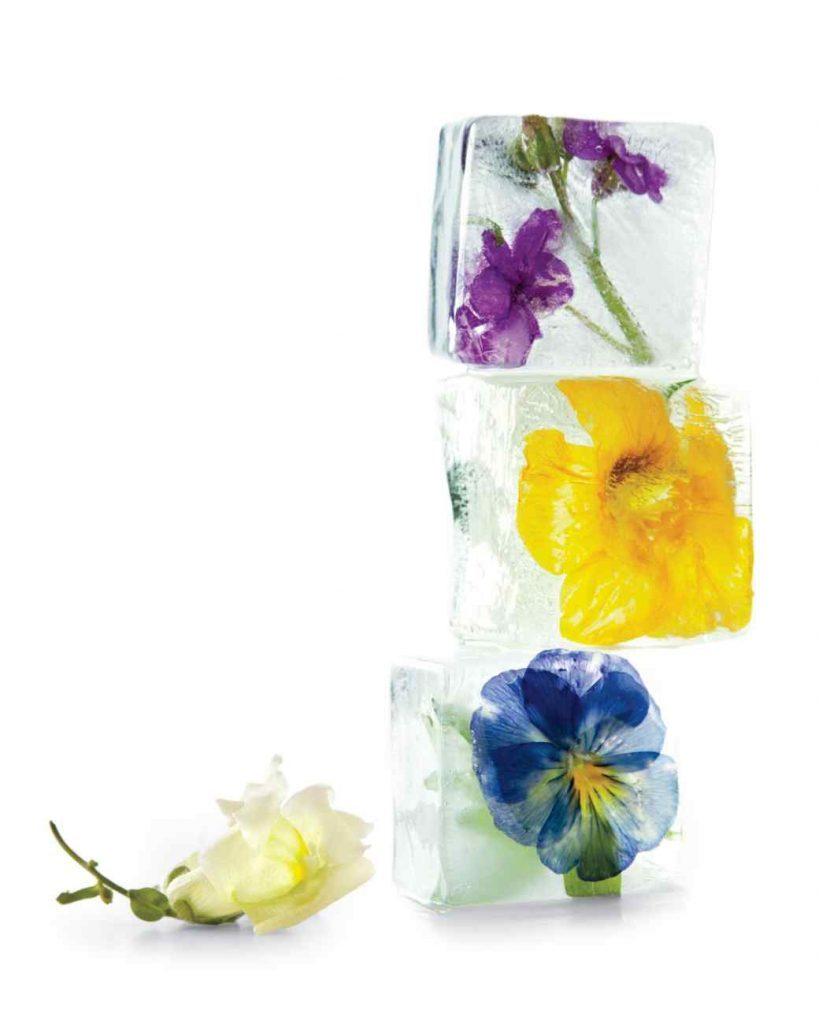 Martha Stewart - Favorite Floral Ice Cube